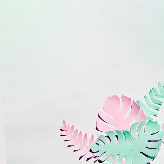 Monsterabladeren met exemplaarruimte op grijze achtergrond