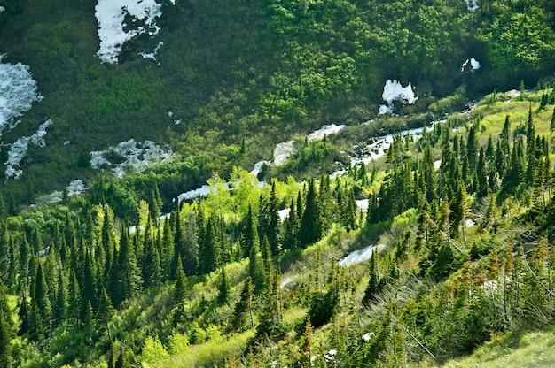 Montana wildernis landschap