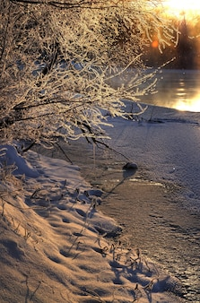 Mooi avondlandschap van een ontdooide rivier met besneeuwde bomen rond op een zonnige avond. het concept van schoonheid van de natuur en de lente