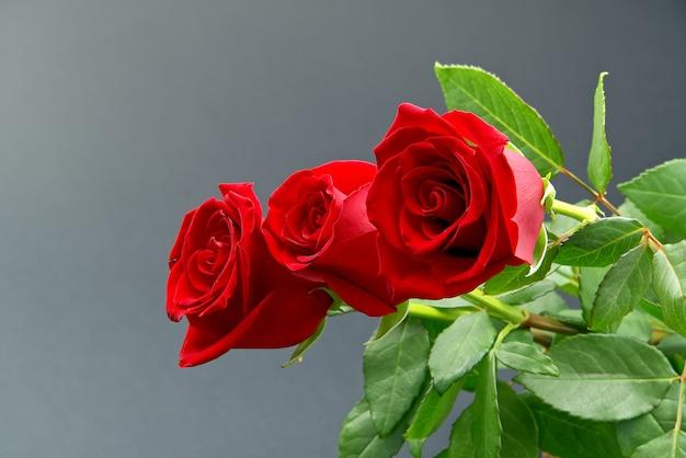 Mooi boeket rozen op grijze achtergrond. het concept van valentijnsdag, moederdag, 8 maart.