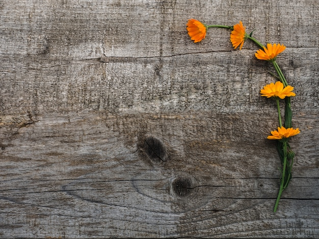 Mooi boeket van bloeiende, heldere bloemen. detailopname.