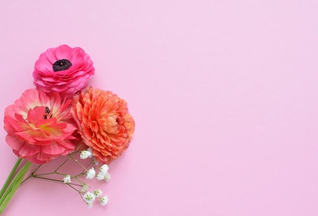 Mooi boeket van kleurrijke ranonkelbloemen op een roze ondergrond