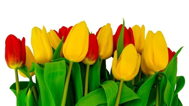 Mooi boeket van rode en gele tulpen