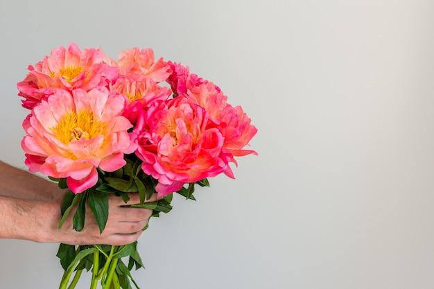 Mooi boeket van roze pioenrozen in de hand van een man op een witte muur achtergrond