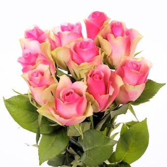 Mooi boeket van roze rozen geïsoleerd op wit