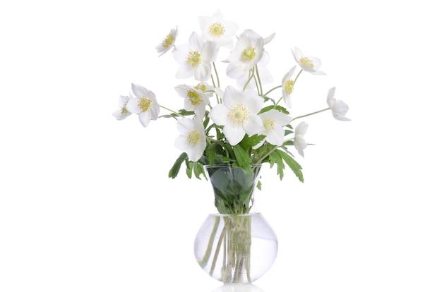 Mooi boeket van witte bloemen in transparante vaas geïsoleerd op een witte achtergrond
