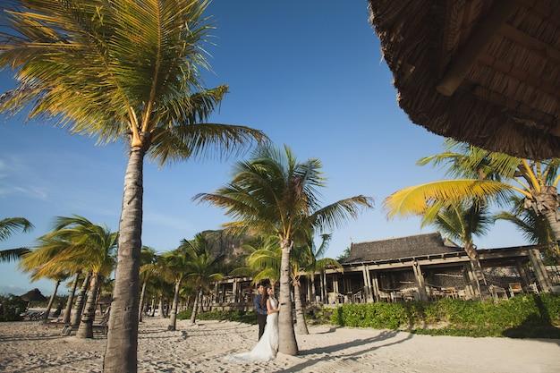 Mooi bruidspaar op het strand in de buurt van palmboom
