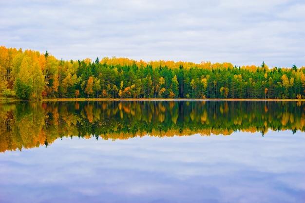 Mooi de herfstlandschap met weerspiegeling van het de herfstbos in het meer
