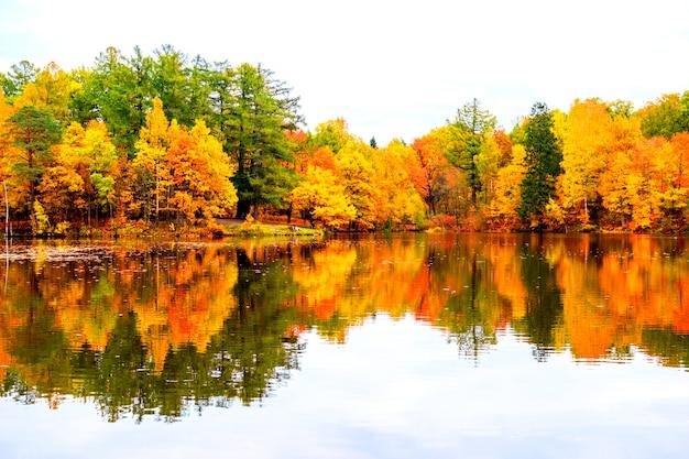 Mooi de herfstlandschap. weerspiegeling van het de herfstbos in het meer.