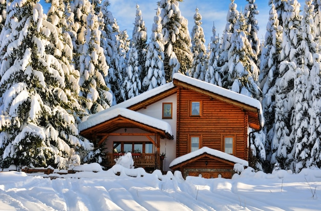 Mooi de sneeuwhuis van de winter in bos