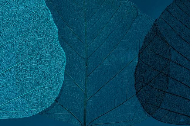 Mooi en gedetailleerd macroblad