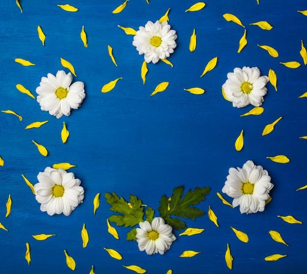 Mooi frame van witte chrysanten en gele bloemblaadjes op een blauwe achtergrond.