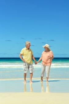 Mooi gelukkig bejaarde echtpaar wandelen langs de kust