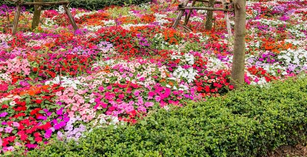 Mooi gemanicuurde bloementuin