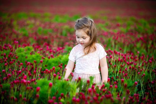 Mooi glimlachend kindmeisje in roze kleding op gebied van rode klaver in zonsondergangtijd