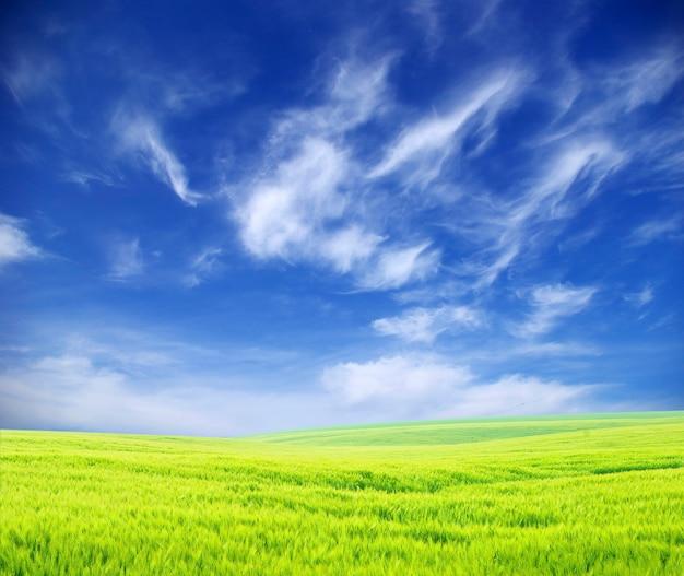 Mooi groen gebiedslandschap en blauwe hemel met wolken