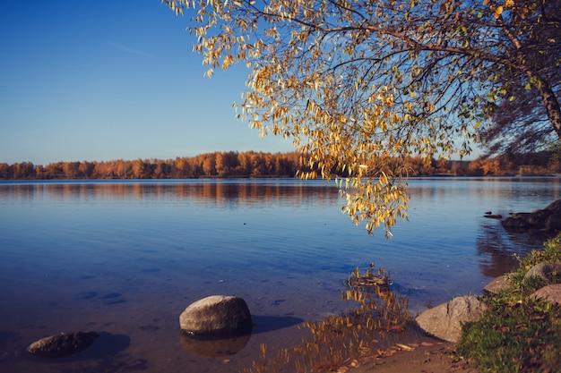 Mooi herfst landschap