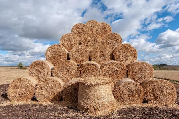 Mooi herfstlandschap met uitzicht op stro rollen in het veld en witte wolken