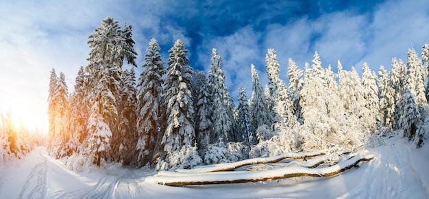 Mooi houten huis in een zonnige winterdag
