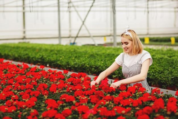 Mooi jong glimlachend meisje, arbeider met bloemen in serre
