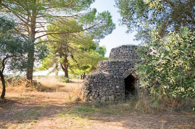 Mooi kegelvormig dak van traditioneel stenen trullohuis in olijfgaard, puglia, italië