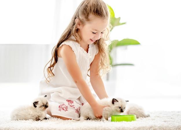 Mooi kindmeisje die ragdollkatjes van kom binnen voeden. kleine vrouwelijke persoon geeft om kattenhuisdieren thuis