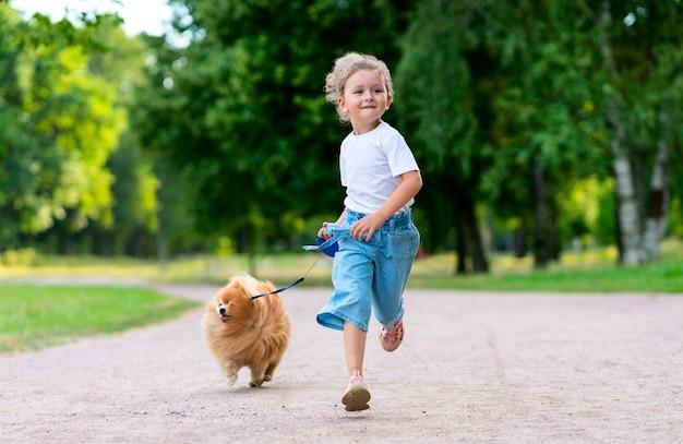 Mooi klein meisje loopt met haar schattige kleine vriend pommeren spitz puppy, mooi kind houdt een hond aangelijnd op een zonnige zomerdag in het park. kinderen houden van dieren, vriendschapsconcept.