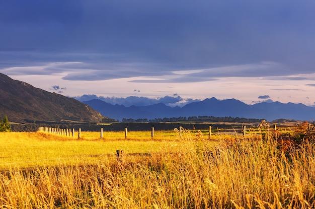 Mooi landelijk landschap van nieuw-zeeland bij zonsopgang