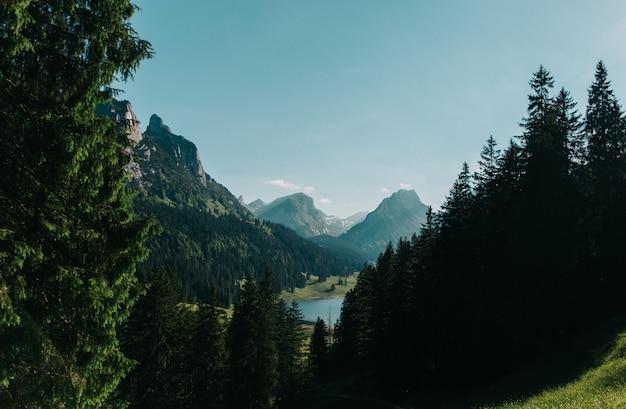 Mooi landschap dat van bomen en bergen onder een duidelijke blauwe hemel is ontsproten