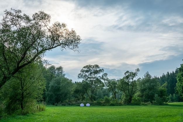 Mooi landschap dat van een groen grasgebied is ontsproten dat door bomen onder de vreedzame blauwe hemel wordt omringd Gratis Foto