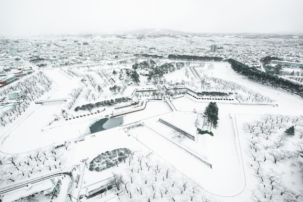 Mooi landschap en cityscape van de toren van fort goryokaku in de stad hokkaido van hakodate