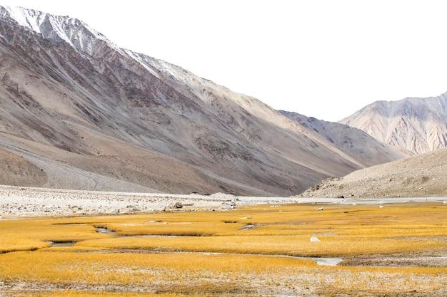 Mooi landschap, herfst kleurrijke en himalaya-gebergte in leh ladakh, noordelijk deel van india
