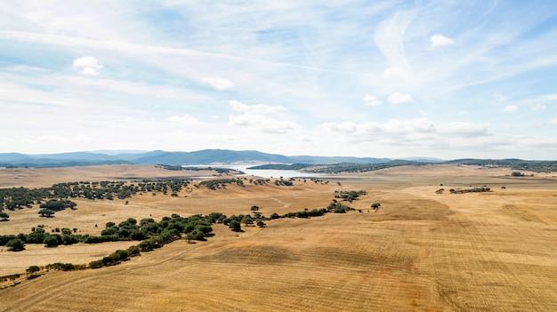 Mooi landschap met droog land