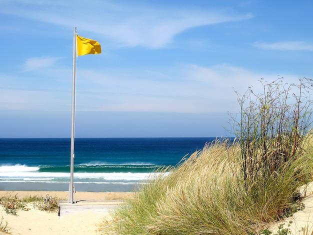 Mooi landschap met golven die op het overzees en de gele vlag breken