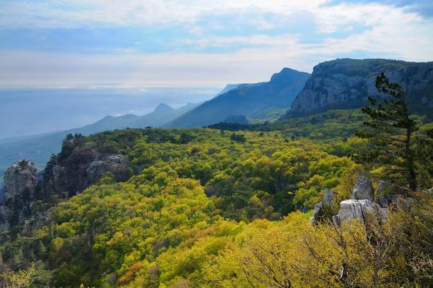 Mooi landschap op de krim, uitzicht vanaf de top van de ai-petri-berg, bosvallei en witte wolken in de lucht