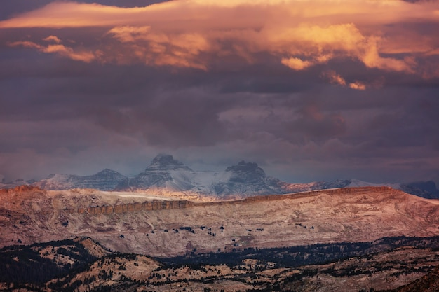 Mooi landschap van beartooth pass. shoshone national forest, wyoming, verenigde staten. zonsopgangscène.