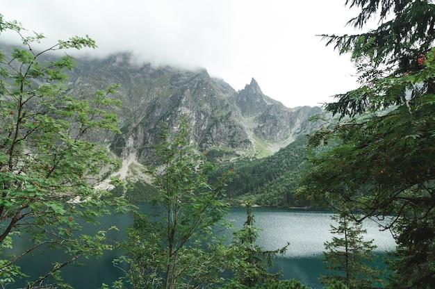Mooi landschap van berg en meer