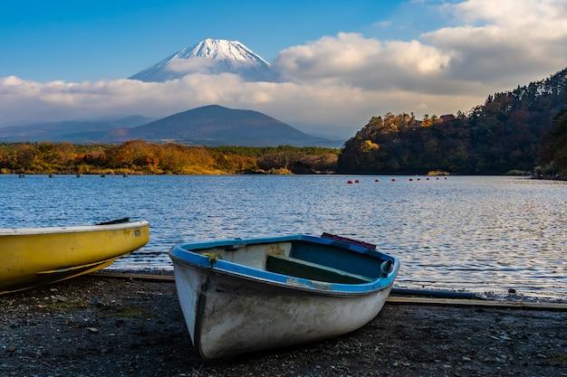 Mooi landschap van berg fuji