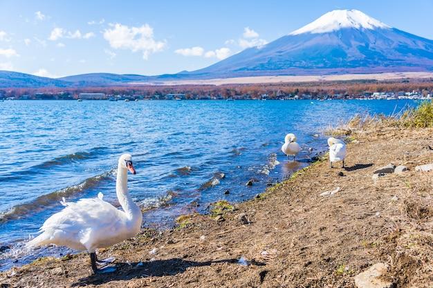 Mooi landschap van bergfuji rond yamanakakomeer