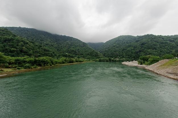 Mooi landschap van de groene rivier, omringd door een bank met bomen