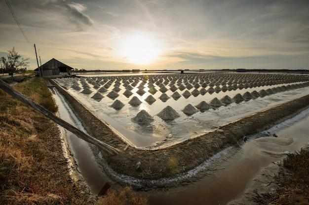 Mooi landschap van de zomer met een zout landbouwbedrijf in thailand