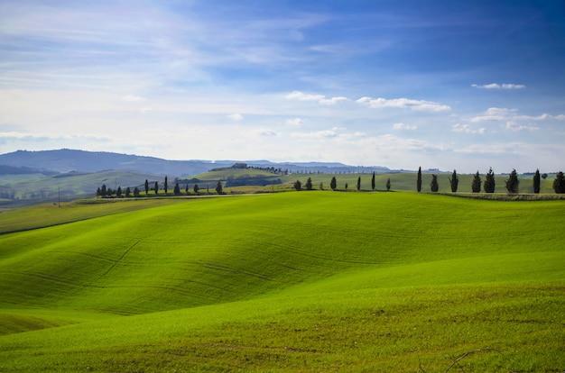 Mooi landschap van groene glooiende heuvels naast een weg met bomen onder een heldere blauwe hemel