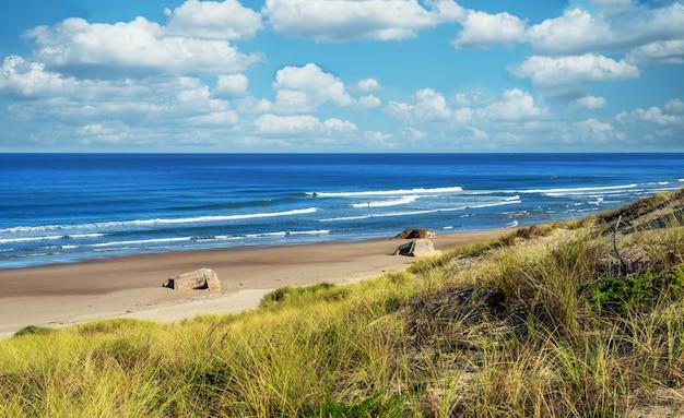 Mooi landschap van oceaanstrand en golven