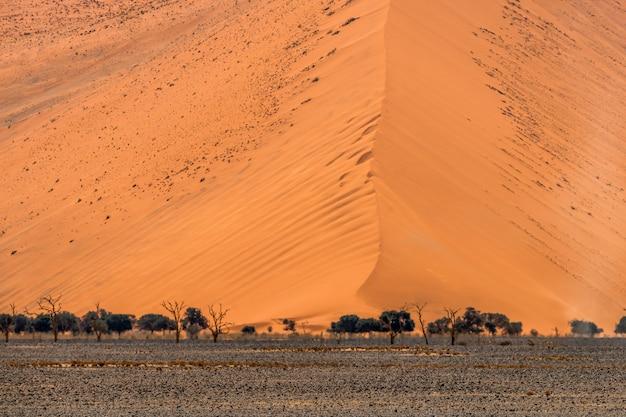 Mooi landschap van oranje zandduin oranje zand bij namib woestijn in namib-naukluft nationaal park sossusvlei in namibië.