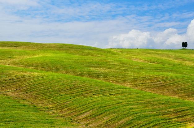 Mooi landschap van toscane