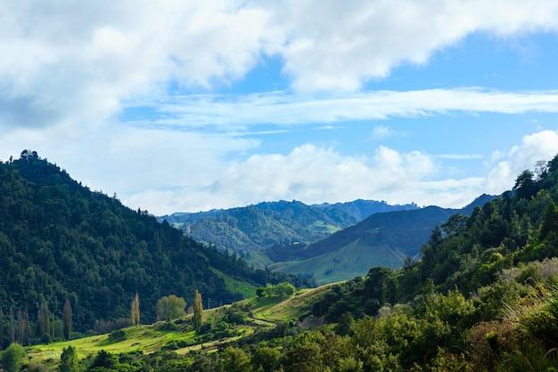 Mooi landschap van whanganui rivierweg in nationaal park in de herfst, whanganui, noordereiland van nieuw-zeeland