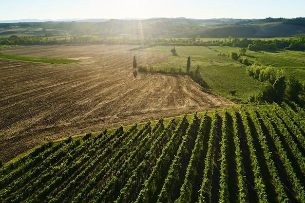 Mooi landschap van wijngaarden in toscane. chianti-regio