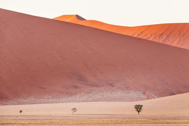Mooi landschap van zandduinen in de namib-woestijn, sossusvlei, namibië