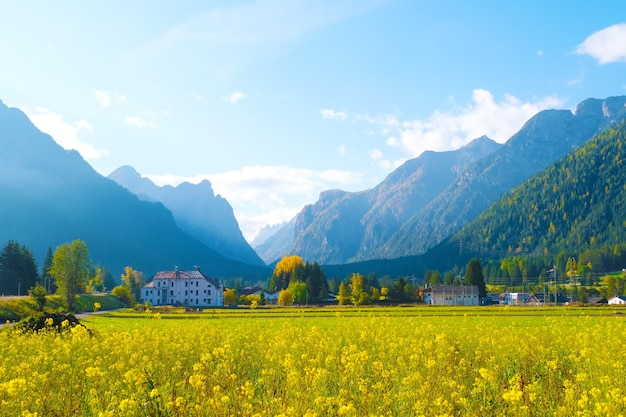 Mooi landschapsmening met bloem van belluno noord-italië.