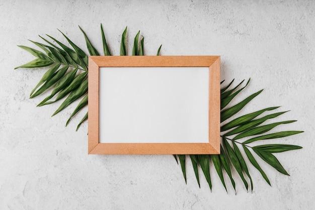 Mooi leeg frame concept